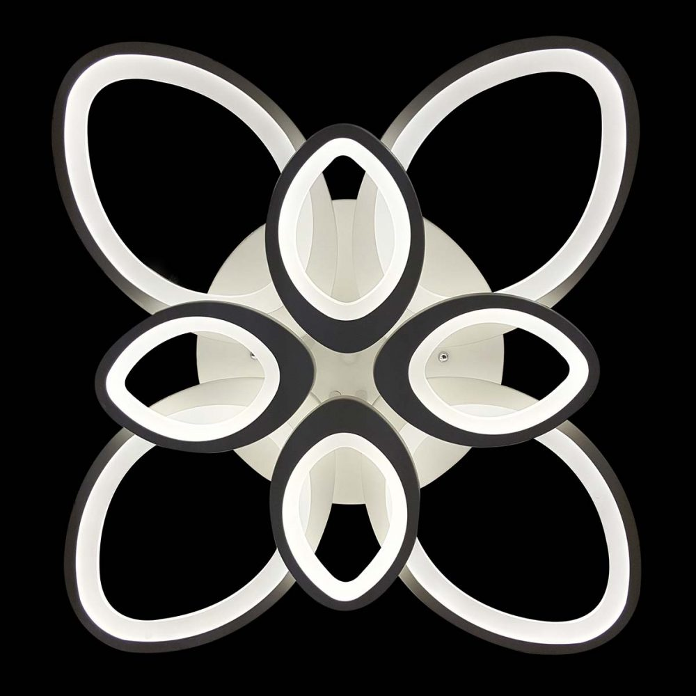 bloom-led фото